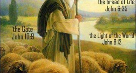 Shepherd of Love
